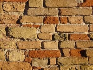 sunny brick-wall